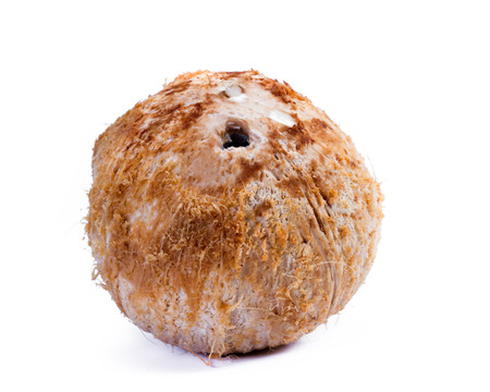 close up of a fresh young coconut isolated on a white background
