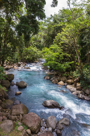 turismo ecologico: Beautiful natural river with a turquoise color in northern Costa rica