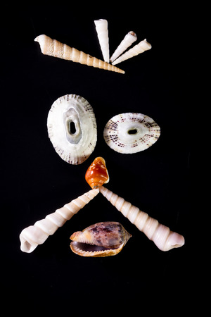 sea shells arranged so that they create a face emanating emotion