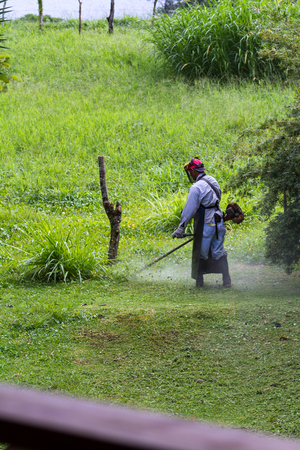 man with a weed whacker mowing the lawn in a large yard in Costa Rica Stock Photo