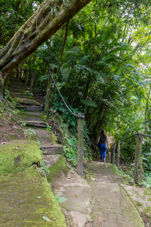 hiking trail in the rainforest of costa rica with steep steps covered with green moss with a blurred woman for a motion effect