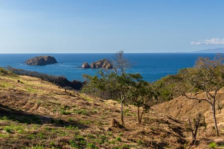 typical dry forest of the north pacific coast in Guanacaste Costa Rica with dried vegetation and beautiful blue waters