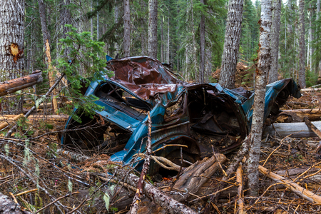 old totaled car found in the woods