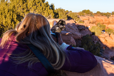 photographer taking a picture of a raven in Canyonlands National Park