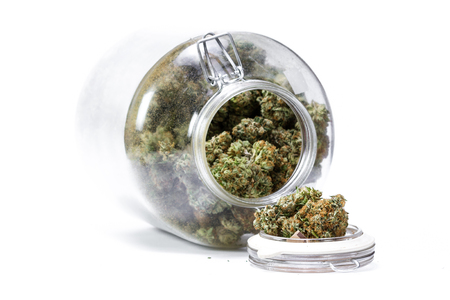 large storage glass jar filled with cannabis buds on a white background
