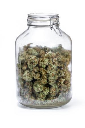 Frasco de vidrio de almacenamiento grande lleno de cogollos de cannabis sobre un fondo blanco. Foto de archivo
