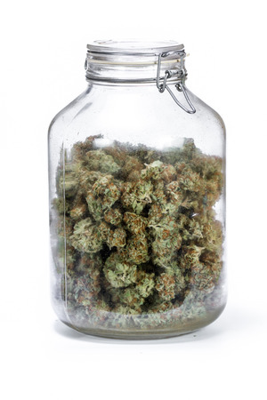 large storage glass jar filled with cannabis buds on a white background Stock Photo