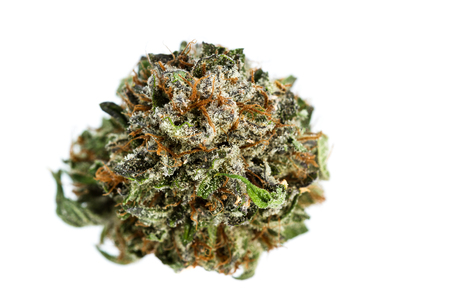 macro image of a popular strain of cannabis known as LDS isolated on a white background. Stock Photo