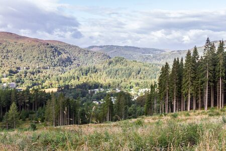 scenic views of the Scottish highlands with abundant natural vegetation and healthy forests
