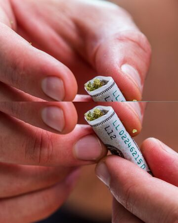 close up of stuffing and rolling a fake one hundred dollar bill cannabis joint
