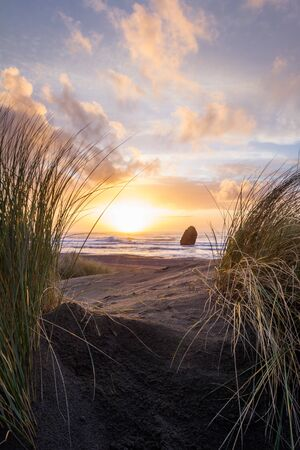 Beautiful and colorful sunset scene thru the tall grass in Gold Beach, Oregon