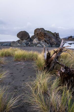 evening view of a well known rock feature in Gold Beach Oregon, Turtle Rock with long grass blowing in the wind and a large piece of drift wood in the foreground