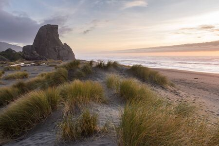 Afternoon in gold beach with the sunsetting being a thick fog bank and kissing rock with a bit f reflected light and the grassy sand dunes in the foreground