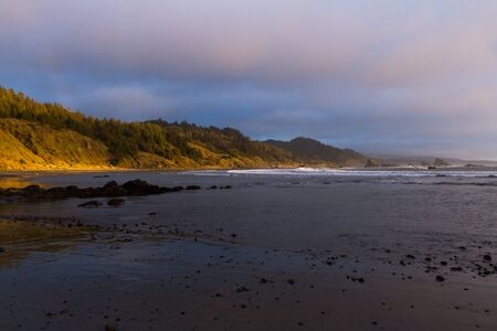 Soft afternoon light brightening a section of the hillside and trees and adding a bit of a reflection on the wet sand at the north section of Myers Creek Beach in Oregon known as Hunters Cove 写真素材