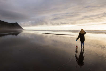 woman walking her chihuahua in the southern Oregon coast on wet sand giving a reflection and Cape Sebastian at the distance Stok Fotoğraf