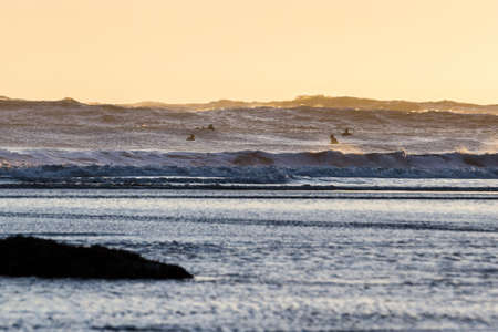 Surfing in the cold pacific waters of the Oregon coast as the sun sets casting a strong backlight adding a glow on the mist and moisture in the air