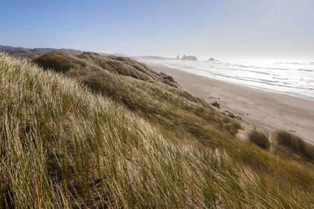 Beautiful landscape from the grassy sand dunes at Pistol River Oregon