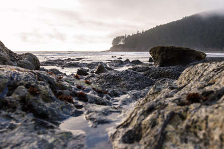 moody afternoon at the Oregon coast with low clouds and a bit of light on the rocky shoreline leading to the point at Cape Sebastian in southern Oregon Stok Fotoğraf - 152842330