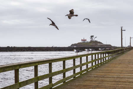 Cloudy afternoon in Crescent City California with a beautiful view of the Battery Point Lighthouse from the harbor with sea gulls relaxing on the boardwalk