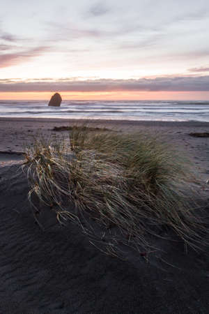 tranquil afternoon in Gold Beach with the sunsetting behind a thick fog bank and grassy dunes in the foreground