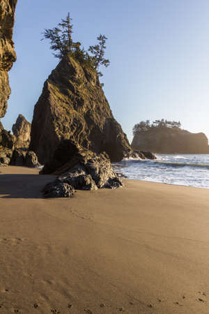 Tranquil beach in the southern Oregon coast known as Secret Beach with beautiful Islets topped with evergreen trees on a beautiful sunny day Stok Fotoğraf