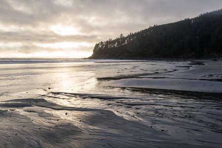 moody afternoon at the Oregon coast with soft golden light making it thru the layers of fog and reflecting on the wet sand