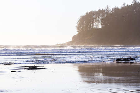 beautiful view form Hunters Cove in the southern Oregon coast with jagged rocks and evergreen trees Stok Fotoğraf