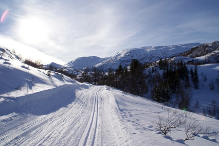 Skiing in Norway photo