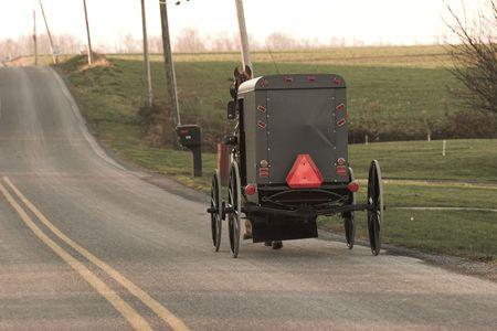 Amish paard en buggy, Chester County, Pennsylvania Nederlands