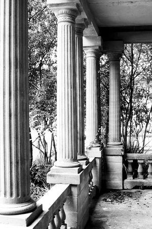 greek revival columns on abandoned mansion Standard-Bild