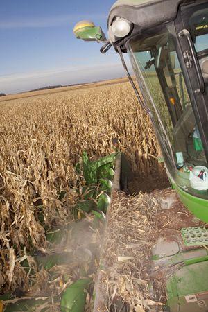 combine harvesting corn in south dakota photo