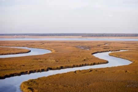 pantanos: Vista a�rea baja del delta marino de estuario y r�o