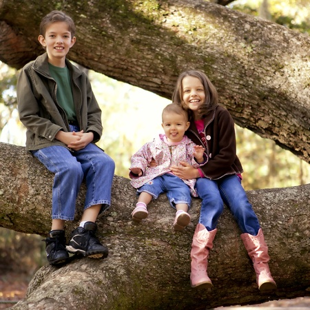 large: three children playing in large tree Stock Photo