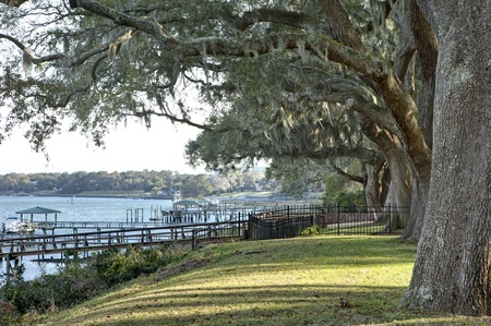 south carolina: waterfront property with lawn and trees