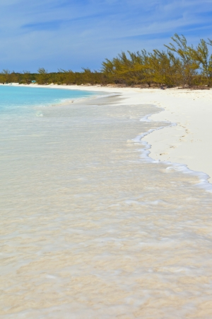 isabel: tropical beach in the bahamas