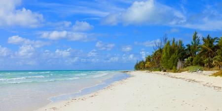 empty tropical beach in the bahamas