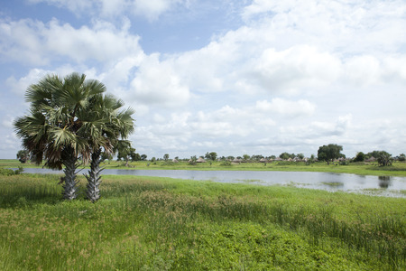 나일강의 채널과 남부 수단의 마을 에디토리얼