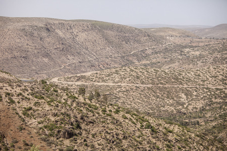 cropland: desert mountains of eastern Ethiopia with terraced cropland