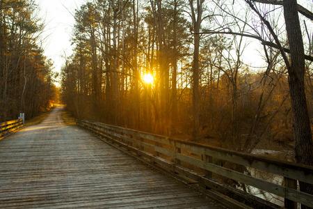 north carolina: Footbridge over stream at sunset in North Carolina, autumn scene.