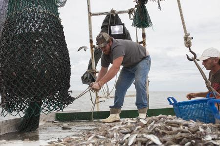 barca da pesca: Deckhands portando rete piena di pesci sul ponte della barca da pesca