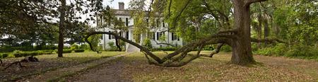 roble arbol: Beaufort, Carolina del sur 25 DE ABRIL DE 2013: Foto panorámica de la casa histórica y el árbol de roble vivo en la parte más antigua de Beaufort, Carolina del Sur