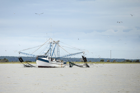 Commercial fishing boat catching shrimp in South Carolina 스톡 콘텐츠