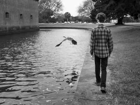 persona caminando: adolescente de moda pie de cámara tan grande pájaro vuela lejos