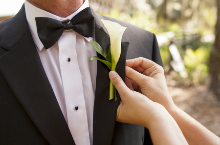 pinning: Closeup of hands pinning boutonniere on groom Stock Photo