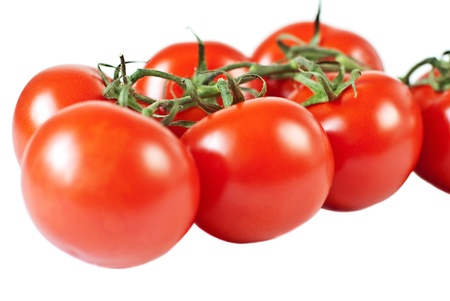 Tomato with branch, isolated on white photo