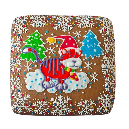 Gingerbread with a painted tiger on a white background Stock Photo