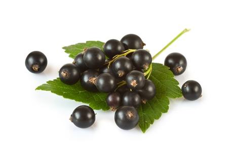 Blackcurrants isolated on white background  Stock Photo