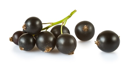 Blackcurrants isolated on white background  photo