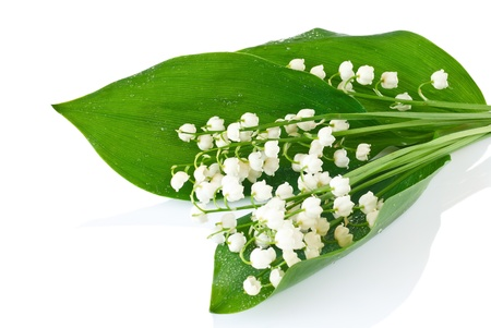 Bouquet of lilies of the valley on white background photo