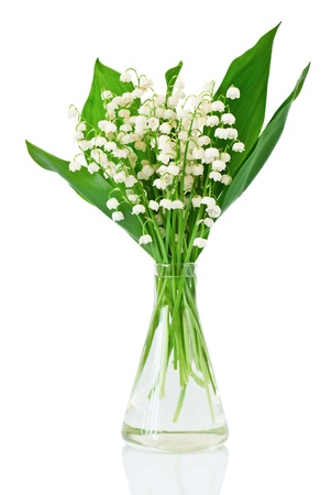 may lily: Bouquet of lilies of the valley on white background